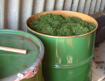 Как сделать в домашних условиях траву